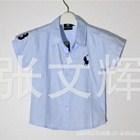 เสื้อเชิ้ต-POLO-หนุ่มนอก-สีฟ้า-(5-ตัว/pack)