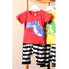ชุดเสื้อกางเกง-Dinosaur-Summer-สีแดง-(5ตัว/pack)